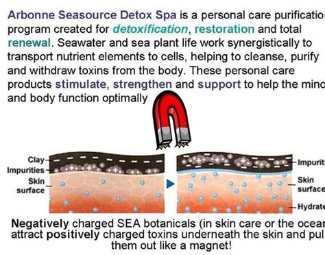 Arbonne Detox Spa Presentation by Best 25 Detox Spa Ideas On