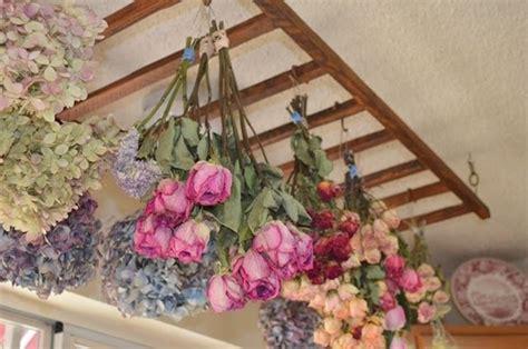far seccare i fiori decorazioni floreali regalare fiori tipi di