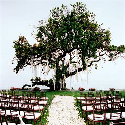 Wedding Garden Wedding Inspiration Center Beautiful Outdoor Wedding