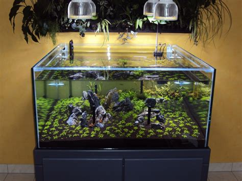 orphek pr72 planted aquarium led lighting