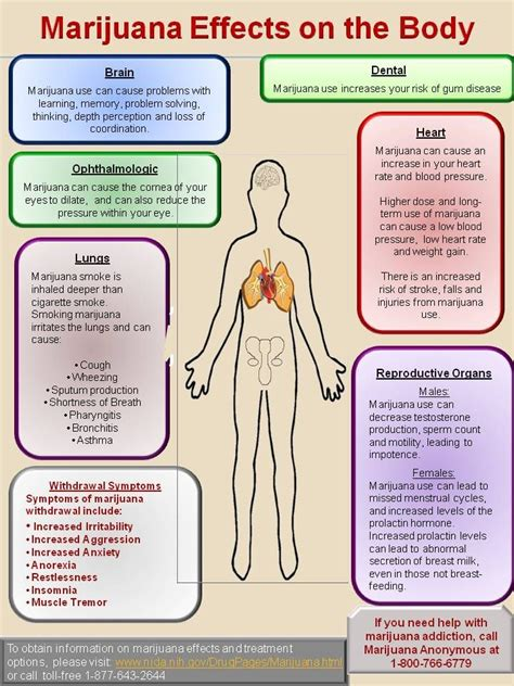 Marijuana Detox Effects by The 25 Best National Institutes Of Health Ideas On