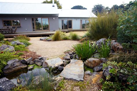 australian native plants  rock gardens   survive