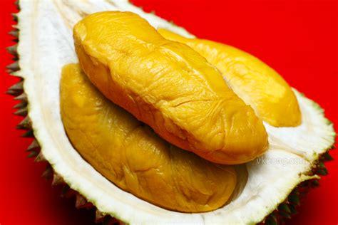 Bibit Durian Musang King 2017 harga jual bibit durian musangking montong bawor murah