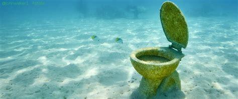 uringeruch aus teppich entfernen uringeruch entfernen geruch 24 de