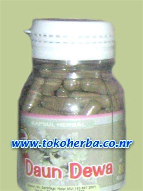 Ajib Kapsul Mengkudu Obat Herbal Kencing Manis Stroke Jantung obat herbal alami daun dewa