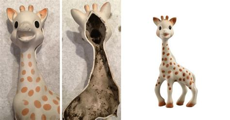 amazon credit black friday consumer alert is your sophie giraffe filled with black mold