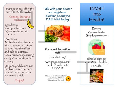 nutrition brochure template dash diet brochure nutr 360 high quality template