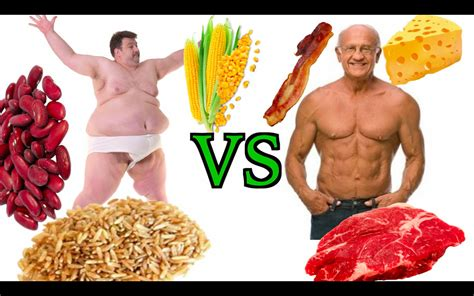 protein v carbs high carb vegan vs low carb paleo diet the