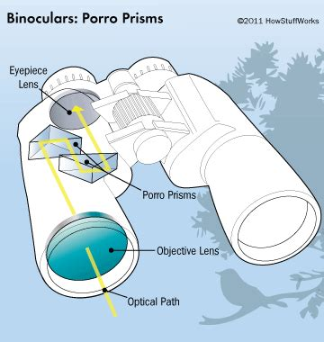 what are you having roof prism or porro prism binoculars