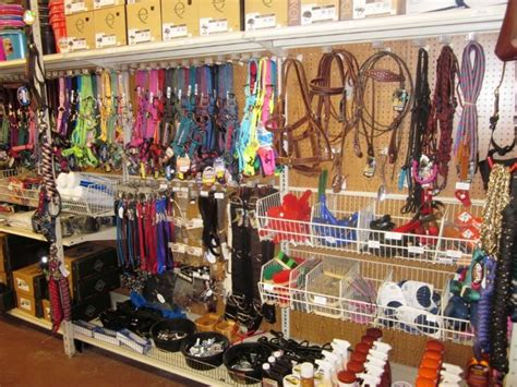 Horse Tack Giveaway 2017 - 30 day blog challenge day 8 my favorite tack store budget equestrian
