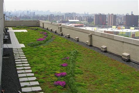 green roof bronx council for environmental quality 187 blog archive