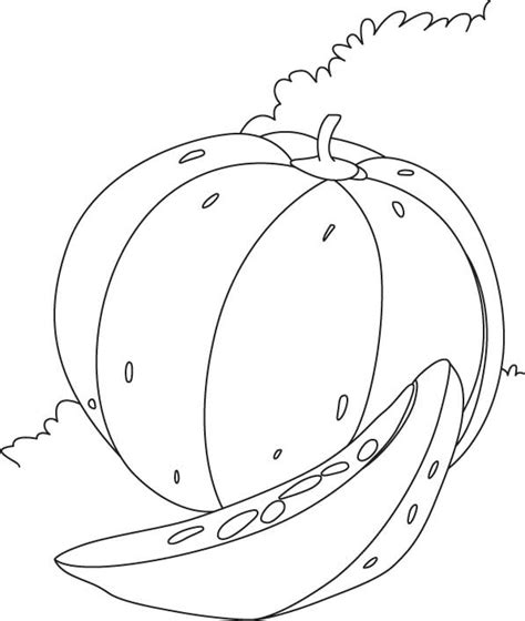 large pumpkin coloring page download free large pumpkin