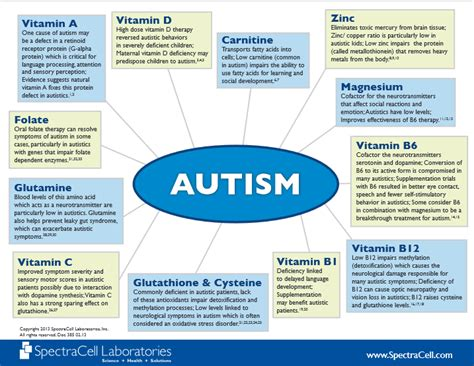 Gi Detox Autism healing from the inside out nutritional support for