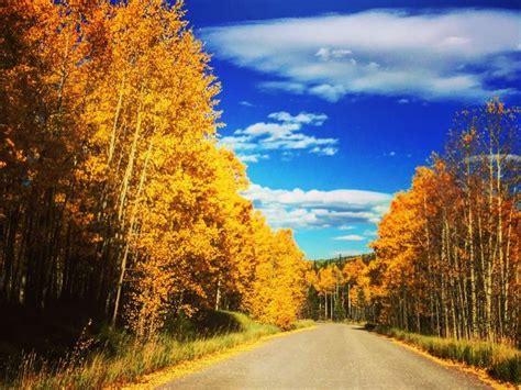 colorado fall colors colorado s fall colors