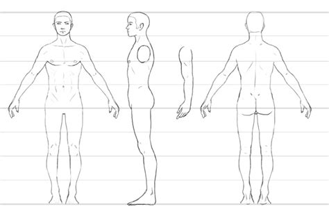 character design template this is a character turnaround template i think