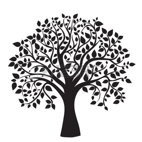 Free Family Tree Clipart Pictures Clipartix Family Tree Stock Vectors Vector Clip