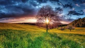 Computer Desktop Hd Wallpapers Landscape Sunset Field Sky Tree Hd Desktop