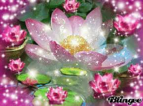 Lotus Animation Lotus Gif Images Unseen Pictures 4 You