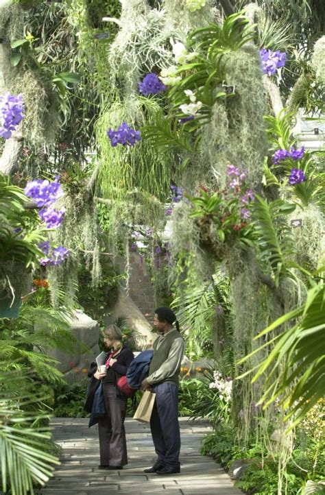 Orchid Show At The New York Botanical Garden by Treasures Of New York The New York Botanical Garden Tv