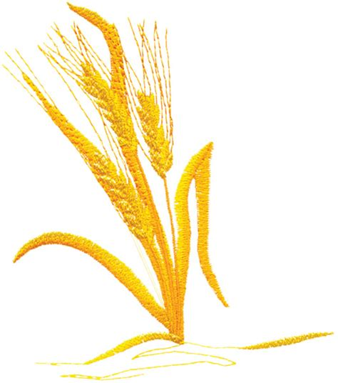 embroidery design wheat foods embroidery design wheat stalk from grand slam designs