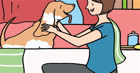 how often should you bathe a puppy how often should you bathe your what to