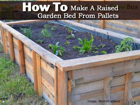 how to build a raised bed how to make a raised garden bed from pallets