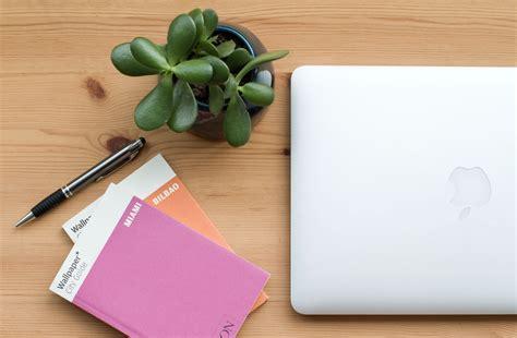 best plant for desk best desk plants for your workspace rushfaster blog