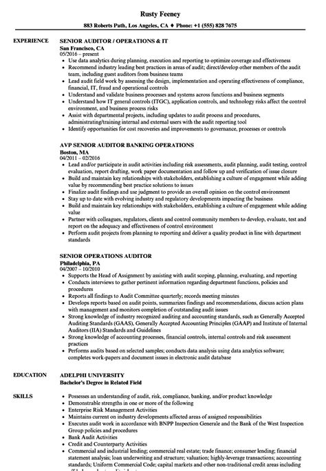 operations auditor resume sles velvet