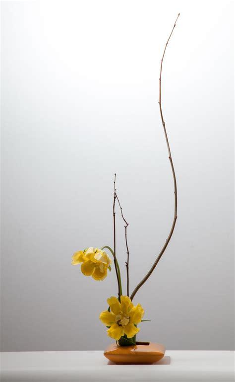 ikebana fiori 1000 ideas about ikebana arrangements on