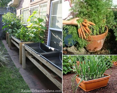 Patio Vegetable Garden Ideas Matt Pearson Container Container Gardens Vegetables