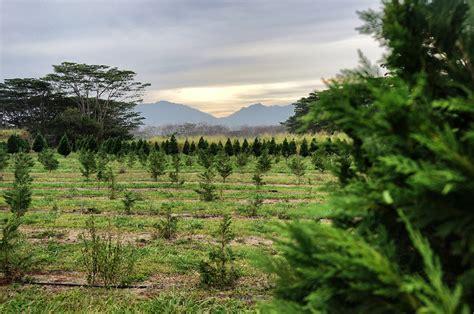 farm exploration hawaii