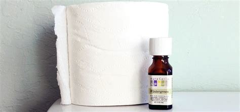 adding a toilet to a bathroom add essential oil to toilet paper to eliminate bathroom odors 171 housekeeping