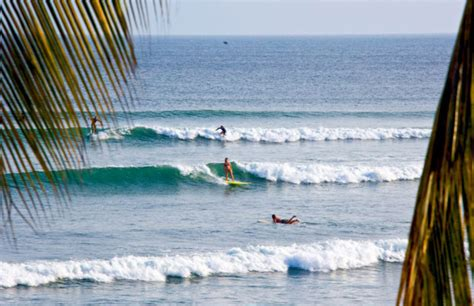 the 5 most family friendly surf vacations the inertia