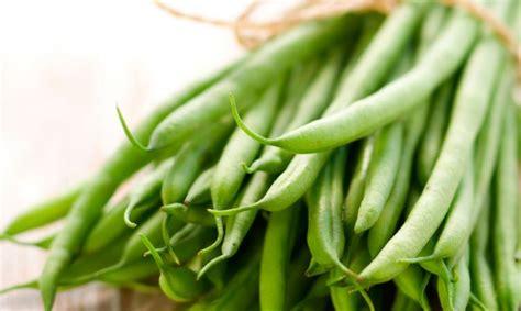 imagenes judias verdes beneficios de las jud 237 as verdes buena salud