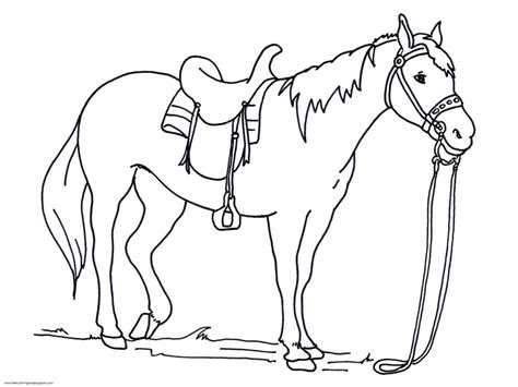 coloring pages free printable horse head coloring pages