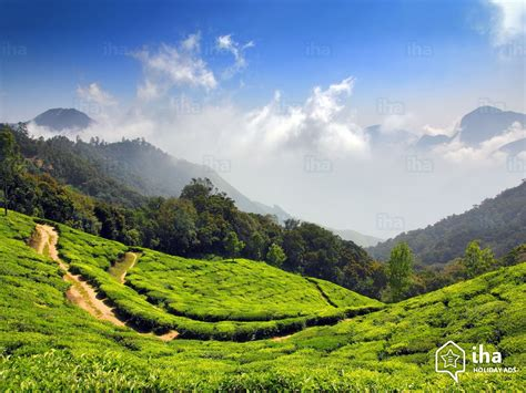 Homes In The Mountains kerala rentals in the mountains for your vacations with iha