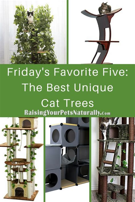 top 5 best modern cat trees of 2017 urban minimalist friday s favorite five the best unique cat trees for cats