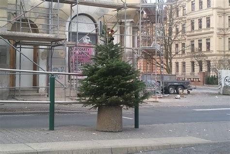 weihnachtsbaum entsorgen berlin stadtwirtschaft entsorgt wieder ausgediente