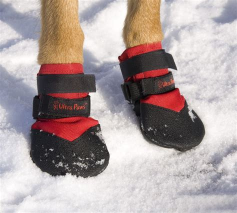 boots for dogs ultra paws durable boots