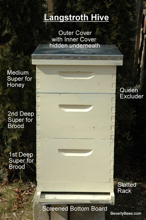 Basic House Plans by Parts Of A Beehive Beginner Beekeeper S Guide