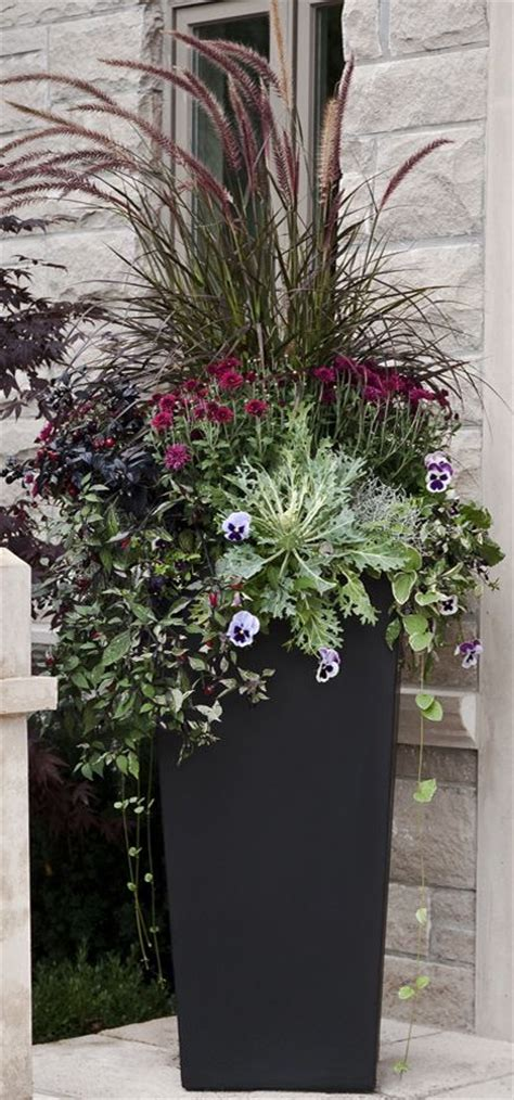 Planters With Plants by Best 25 Planters Ideas On Outdoor Potted
