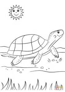 turtle coloring page turtle coloring page free printable coloring pages