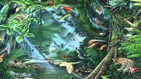 imagenes en 3d que es qu 233 es la biodiversidad youtube