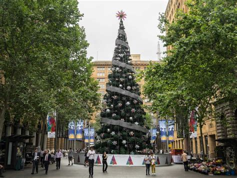 the 20 metre tall christmas tree in sydney abc news