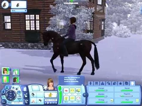 sims  horse winter arabian youtube