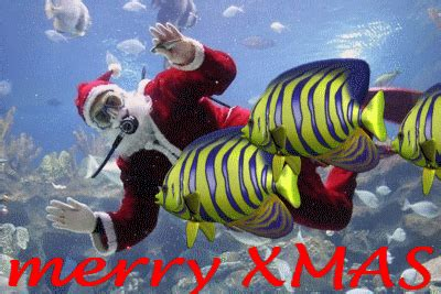 gif blogspotcom funny  wishes quotes photo  cards santa claus funny pictures merry