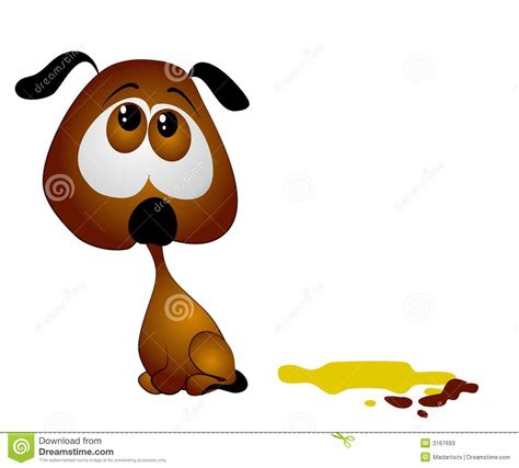 small dog peeing in house house training puppy poop pee stock photos image 3167693