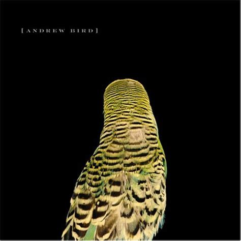 Armchairs Andrew Bird andrew bird armchair apocrypha reviews album of the year