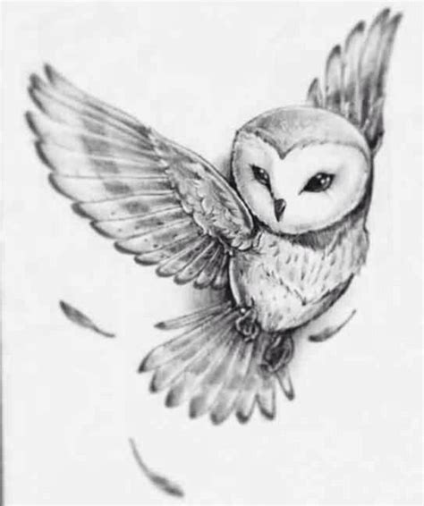 best 25 owl tattoo design ideas on pinterest owl tattoo pictures tattoos drawing drawing art gallery
