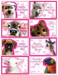 printable animal valentines day cards cute silly animals on pinterest animals alan alan alan